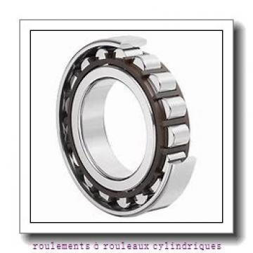 NSK NNCF4844V roulements à rouleaux cylindriques