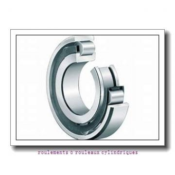 ISB NUP 236 roulements à rouleaux cylindriques