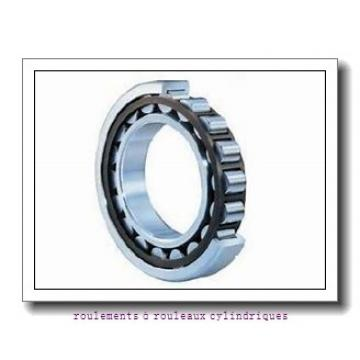 NKE NU2218-E-MA6 roulements à rouleaux cylindriques
