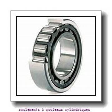 Toyana NJ19/500 roulements à rouleaux cylindriques