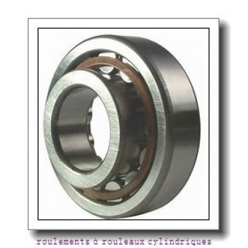 NSK NN4934MB roulements à rouleaux cylindriques