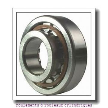 SKF NNCF4960CV roulements à rouleaux cylindriques