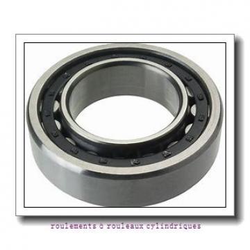 Timken 170RF93 roulements à rouleaux cylindriques