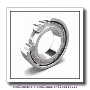 NACHI E5010NR roulements à rouleaux cylindriques