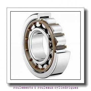 SKF RNA 2206.2RS roulements à rouleaux cylindriques