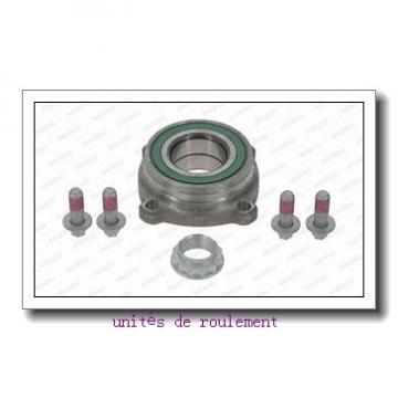 INA RSRA17-102-K0-AH01 unités de roulement
