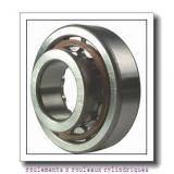 ISB NJ 313 roulements à rouleaux cylindriques