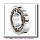 NACHI 24124AX roulements à rouleaux cylindriques